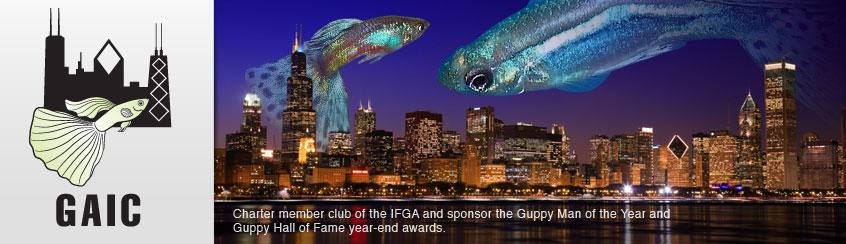 Guppy Associates International Chicago